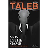 Skin in the Game: Hidden Asymmetries in Daily Life (English Edition)