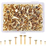 500 Pieces Paper Fasteners Craft Pins Assorted Sizes Round Brass Plated Fasteners Split Pins Metal Brads with Storage Box Gold