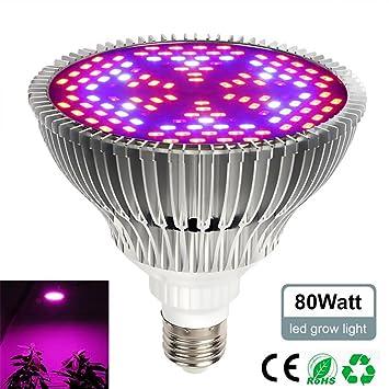LayOPO - Bombilla LED de 30 W para Cultivo de Plantas, Espectro Completo, luz de Cultivo E27 para Plantas de Interior, hidropónicas, Verduras y semilleros: ...
