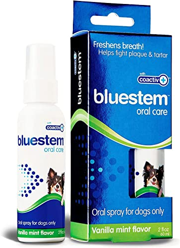 Bluestem Oral Care Vanilla Mint Flavor Dental Dog Oral Spray