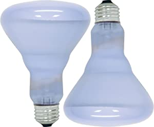 GE Lighting 11684 Reveal 65-watt 445-Lumen BR30 Flood Light Bulb, 2-Pack
