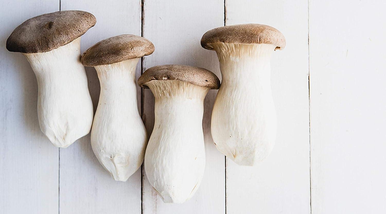Image of Mushroom king oyster