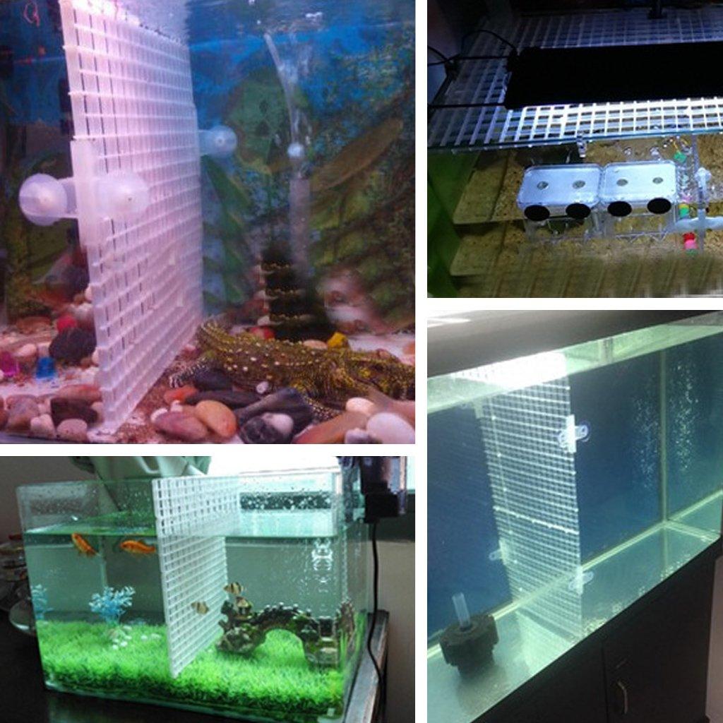 Dabixx Acquario Fish Tank Divisore Ventosa Divisore Set di fogli di plastica Bianco 5 Pezzi