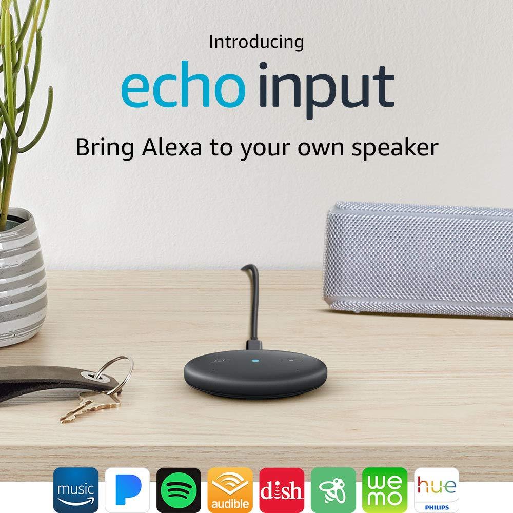 Alexa Input