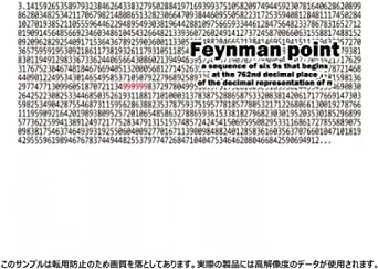ファインマン ポイント