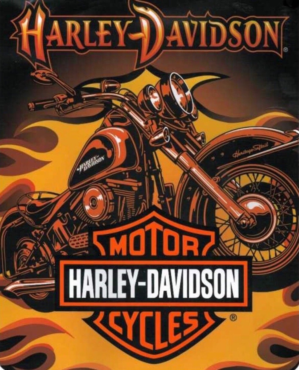 Harley Davidson Sunset Plush Raschel Throw Blanket (Queen)