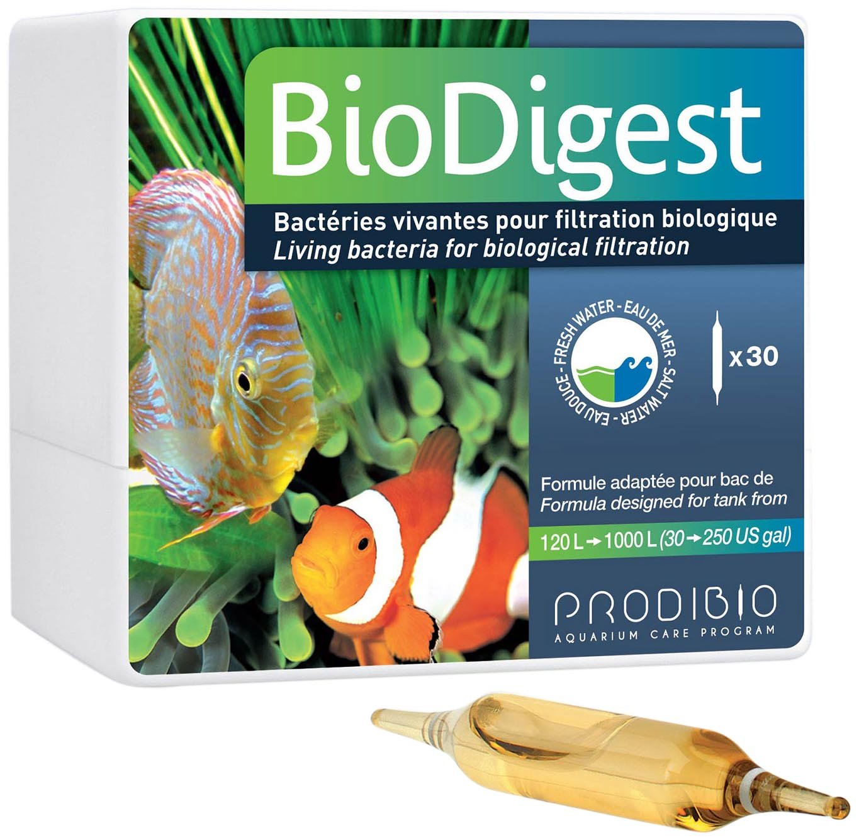 Prodibio bio digest L00105 - Bacterias vivas para filtración biológica , Caja de 30 ampollas: Amazon.es: Productos para mascotas