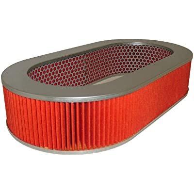Luber-finer AF5037 Heavy Duty Air Filter: Automotive