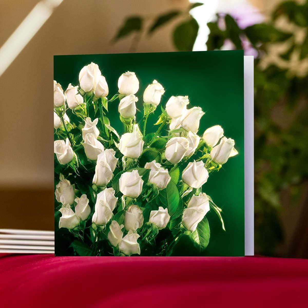 Cartoline di alta qualit/à senza testo allinterno. 08 Bellissimi fiori n