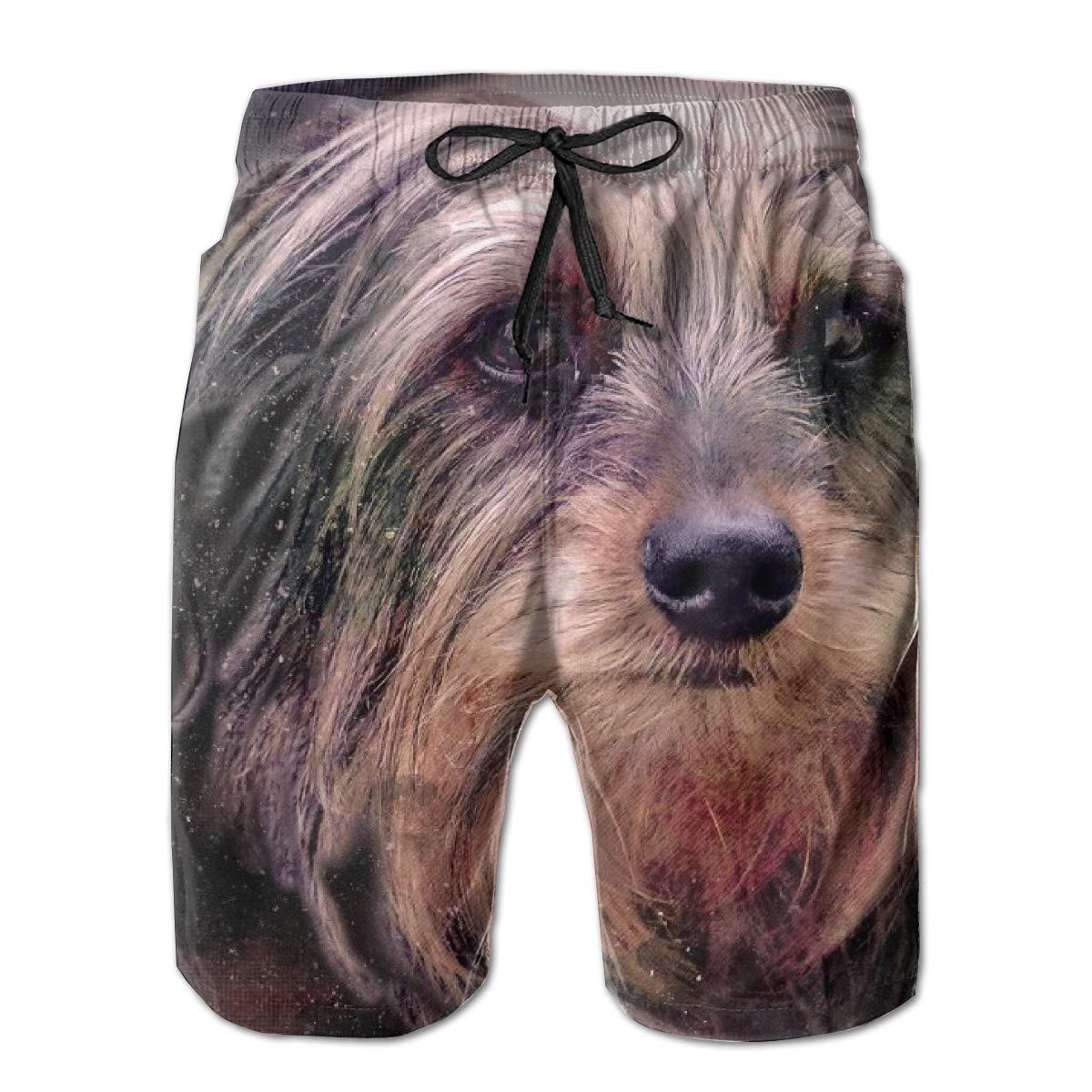 SARA NELL Mens Swim Trunks Schnauzer Dog Animal Surfing Beach Board Shorts Swimwear