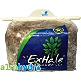 Homegrown Exhale Co2 Bag Indoor Gardening Roots & Foliage Mushroom Bags