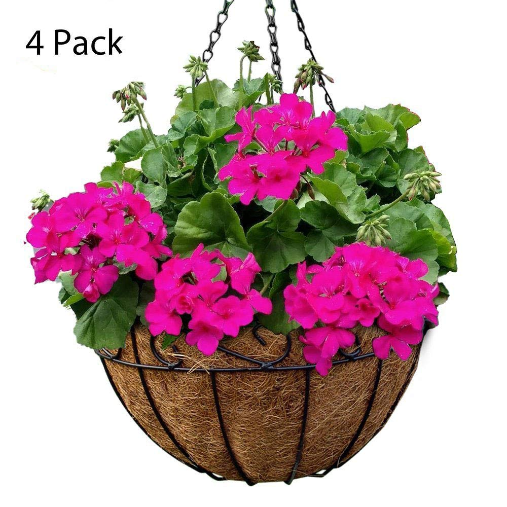 4 Pack Metal Hanging Planter Basket With Coco Coir Liner 12 Inch Round Wire Plant Holder With Chain Porch Decor Flower Pots Hanger Garden Decoration Indoor Outdoor Watering Hanging Baskets by AMAGABELI GARDEN & HOME