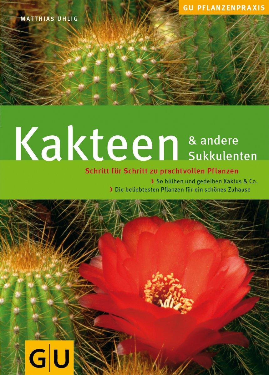 kakteen-andere-sukkulenten-schritt-fr-schritt-zu-prachtvollen-pflanzen-so-blhen-und-gedeihen-kaktus-co-gu-praxisratgeber-garten