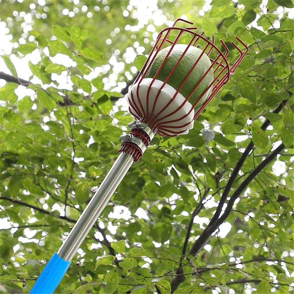 Wood.L Fruit Picker Pole With Basket Lightweight Stainless Steel Extendable Fruit Catcher And Fruit Picker Tool With Telescopic Handle For Pear Peach Pomegranate