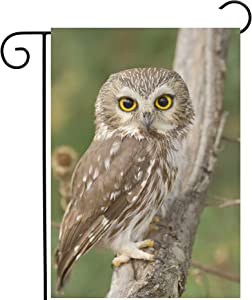 ShineSnow Animal Birds Owl in Forest Wildlife Nature Landscape Garden Yard Flag 12