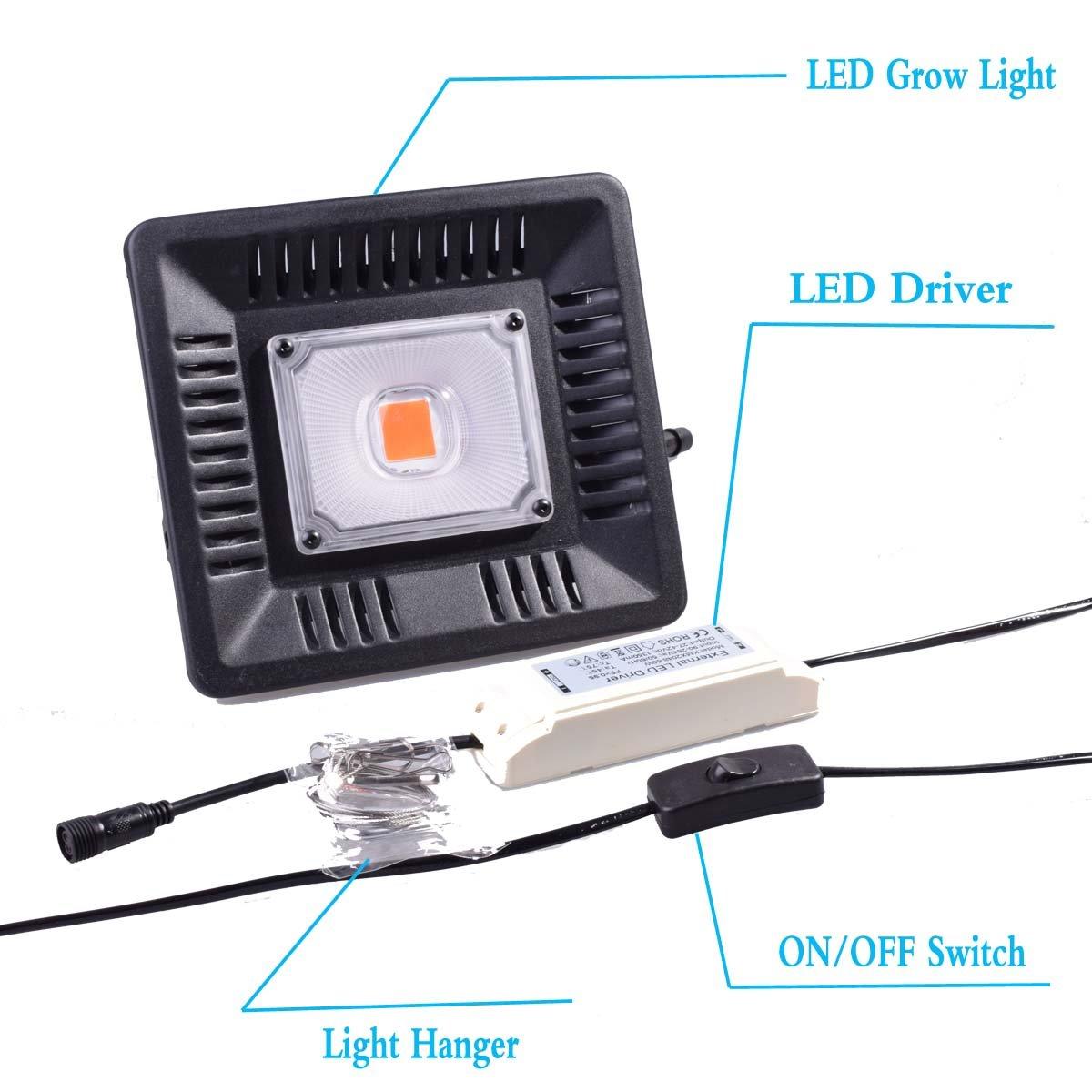 Amazon.com : Full Spectrum LED Grow Light 1000 Watt/1200W for Indoor Plants Veg and Flower (T-100W) : Garden & Outdoor