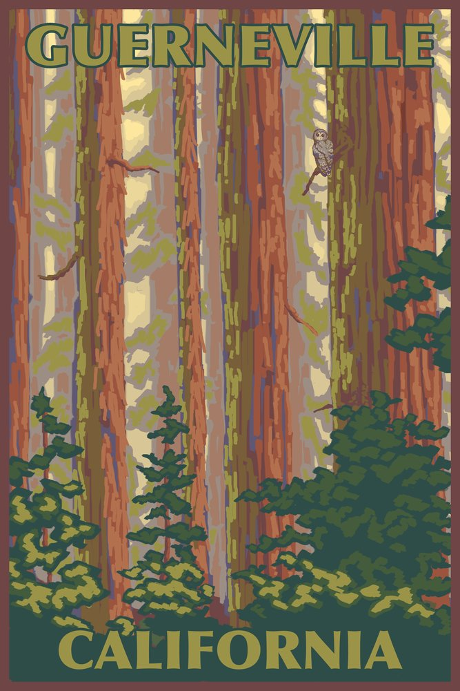 Guerneville、カリフォルニア – フォレストビュー 36 x 54 Giclee Print LANT-52493-36x54 B06Y1GYJGL  36 x 54 Giclee Print