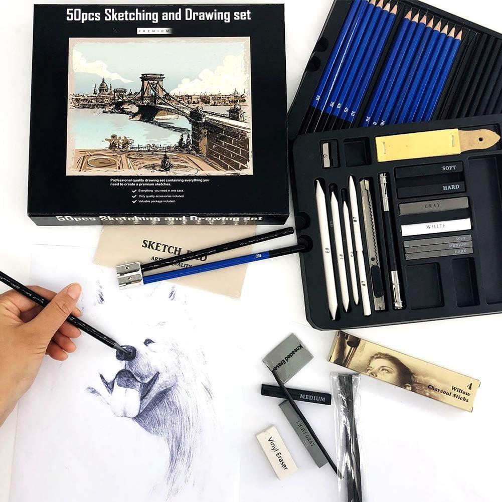 50 unids Artista Profesional Sketching Set de Dibujo L/ápices Sketch Grafito L/ápiz Willow Charcoal Stick Completo Completo conjunto de pintura