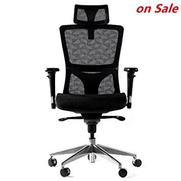 Amazon.com : WINMI Mesh Ergonomic Office Desk Chair High Back ...