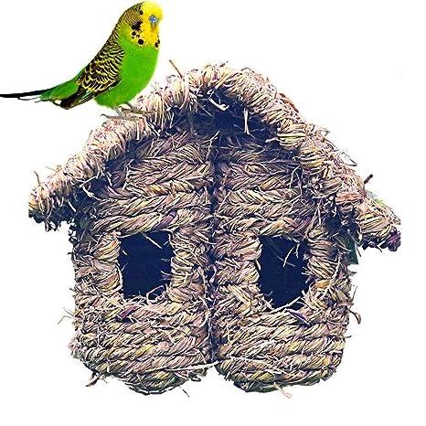 Mascotapara gato perro Nido de pájaros de plantas naturales, casa ...