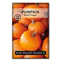 Sow Right Seeds - Small Sugar Pumpkin Seed for Planting - Non-GMO Heirloom Packet...