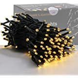 HOME LIGHTING 66ft Christmas Decorative Mini Lights, 200 LED Green Wire Fairy Starry String Lights Plug in, 8 Lighting Modes,