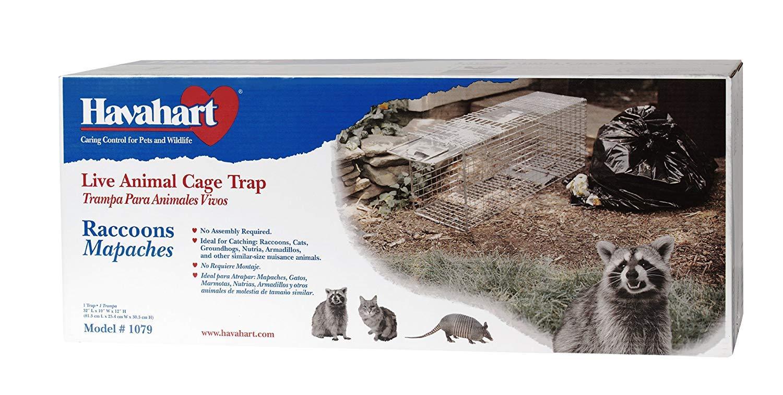 Amazon.com: Havahart 1079 Large 1-Door Humane Animal Trap ...