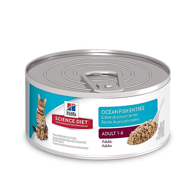 Amazon.com : Hills Science Diet Wet Cat Food, Adult, Minced Ocean Fish Recipe, 2.9 oz Cans, 24-pack : Pet Supplies