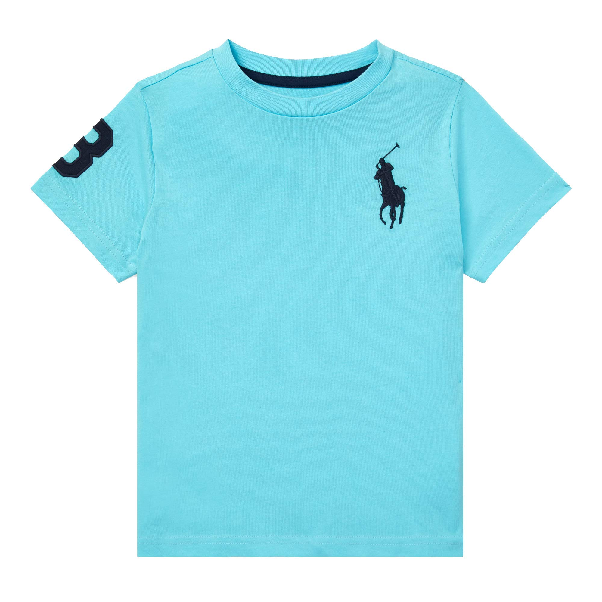 Polo Ralph Lauren Boys Kids Big Pony Cotton Jersey Tee, Hammond Blue (M (10-12))