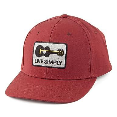 df2b9a8f5 Patagonia Hats Live Simply Guitar Roger That Organic Cotton Snapback ...