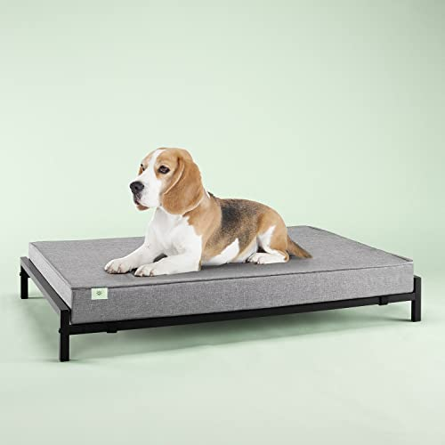 Zinus Elevated Pet Bed and 4 Inch Comfort Mattress Set