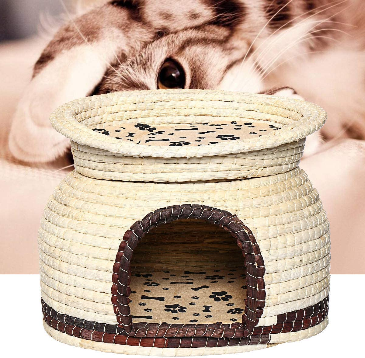 Terrarum - Cesta de Doble Uso para Mascotas, Perros, Gatos, Camas Suaves, caseta para Cachorros: Amazon.es: Jardín