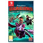 Dragons: Dawn of the New Riders - Nintendo Switch