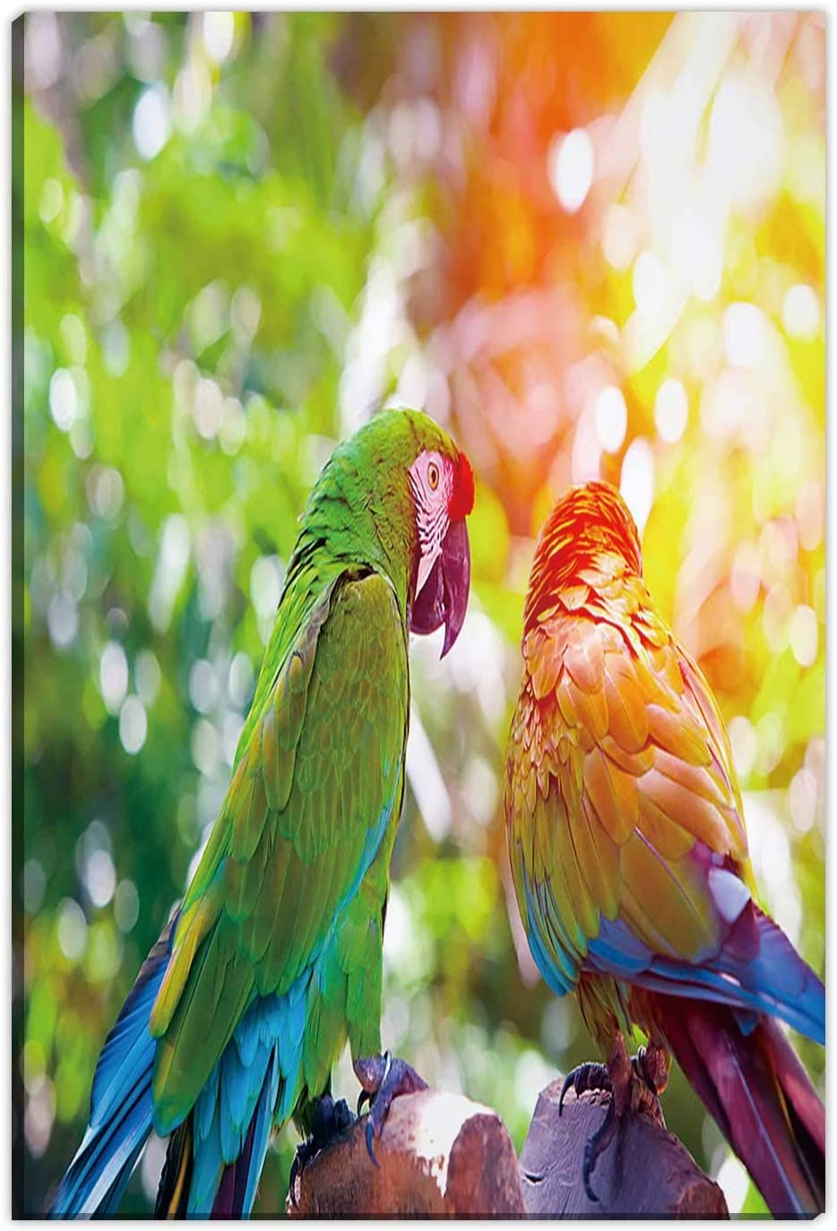 Hitecera Bright Large Tropical Parrots sit on a Branch Home Decorations for Living Room,065941 Wall Art Decor,12''Wx18''H