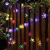 Panpany 50 LED Solar String Lights