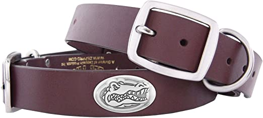 ZEP-PRO NCAA boys Ncaa Florida Gators Zep-pro Childrens Leather Concho Belt Brown