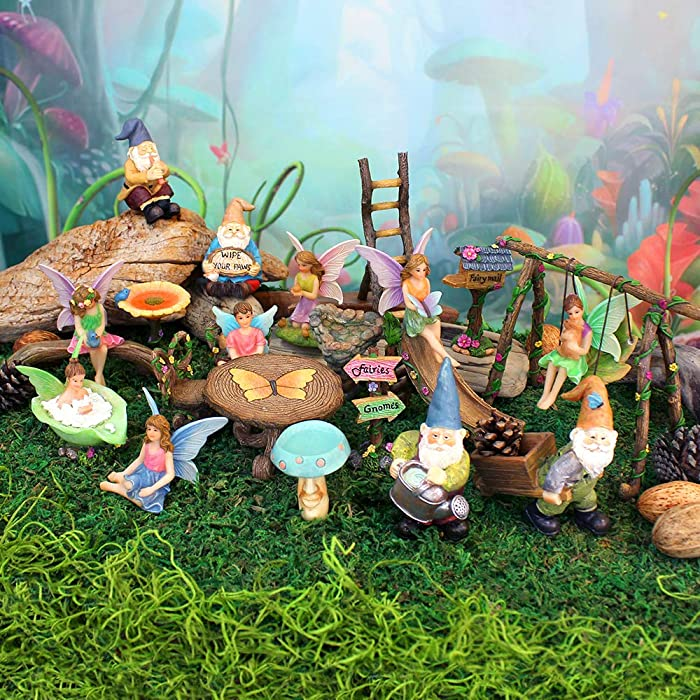 NW Wholesaler Fairy Garden Complete 23 Piece Kit - Includes 7 Fairies, 4 Gnomes, and 12 Pieces of Fairy Garden Accessories, Tools, Toys and Supplies