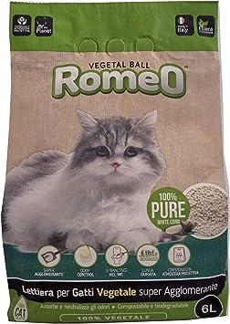 Migliori 7 Sabbia e lettiere per gatti