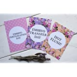 IVF Journey Cards ® - Bright Floral - DD006
