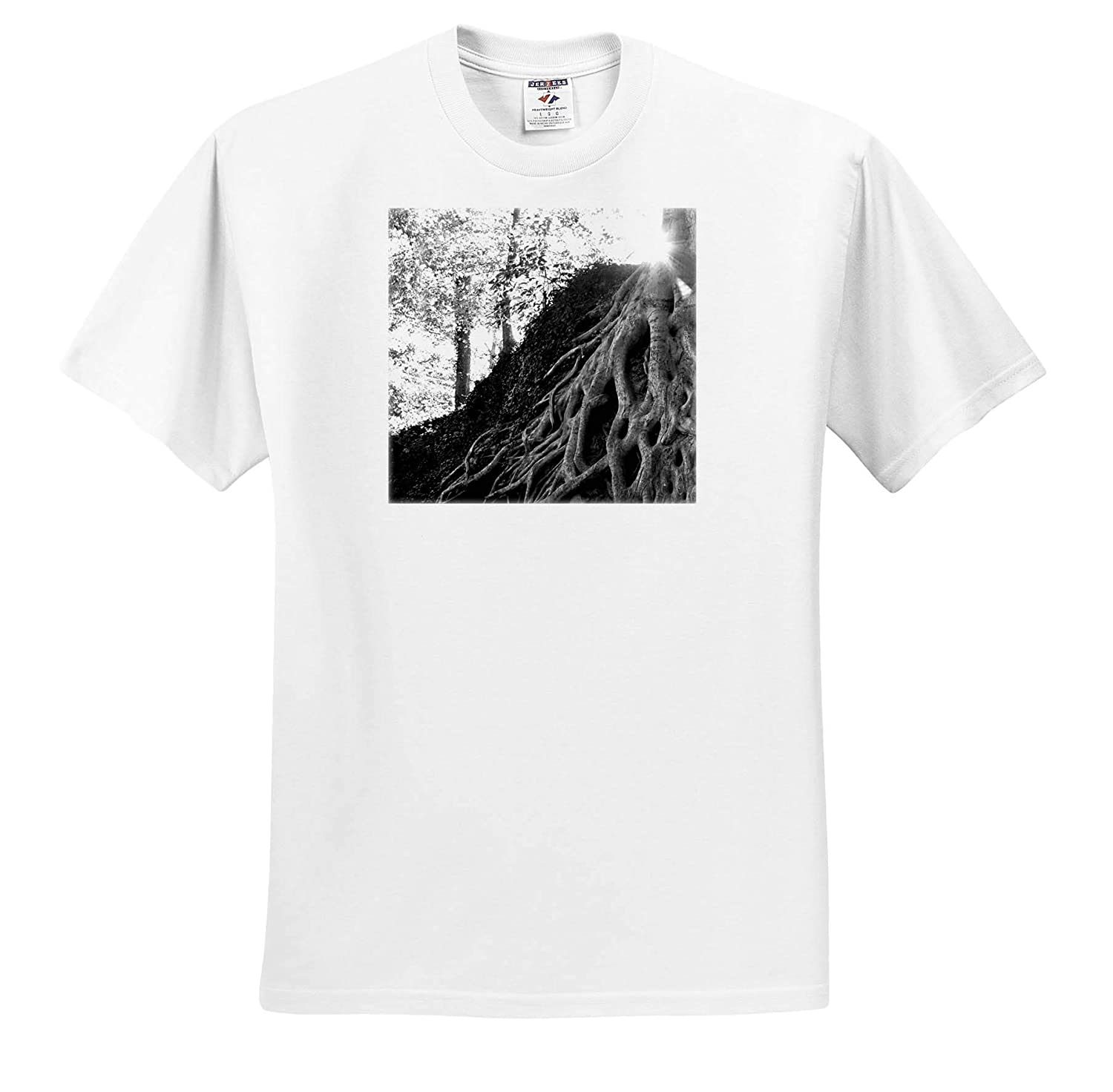 Black and White Photograph of The Medusa Tree in Downtown Greenville - T-Shirts 3dRose Stamp City Nature