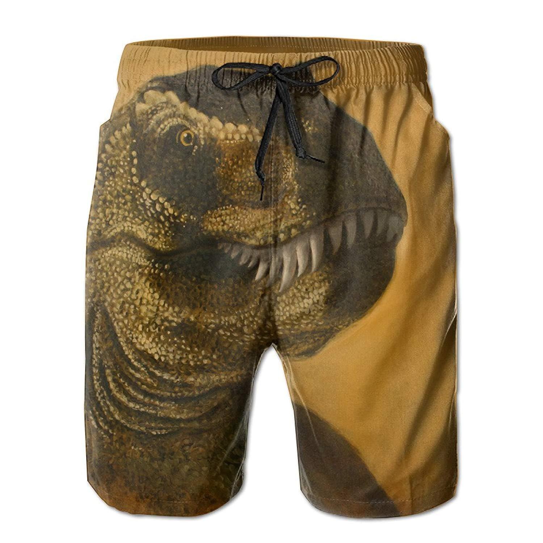Cool Tyrannosaurus Head Painting Summer Mens Quick-Drying Swim Trunks Beach Shorts