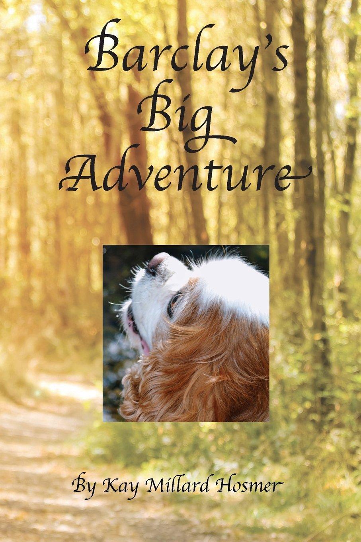Download Barclay's Big Adventure ebook