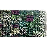 Malhotra Plastic Vertical Garden Set (Black) - Pack of 2