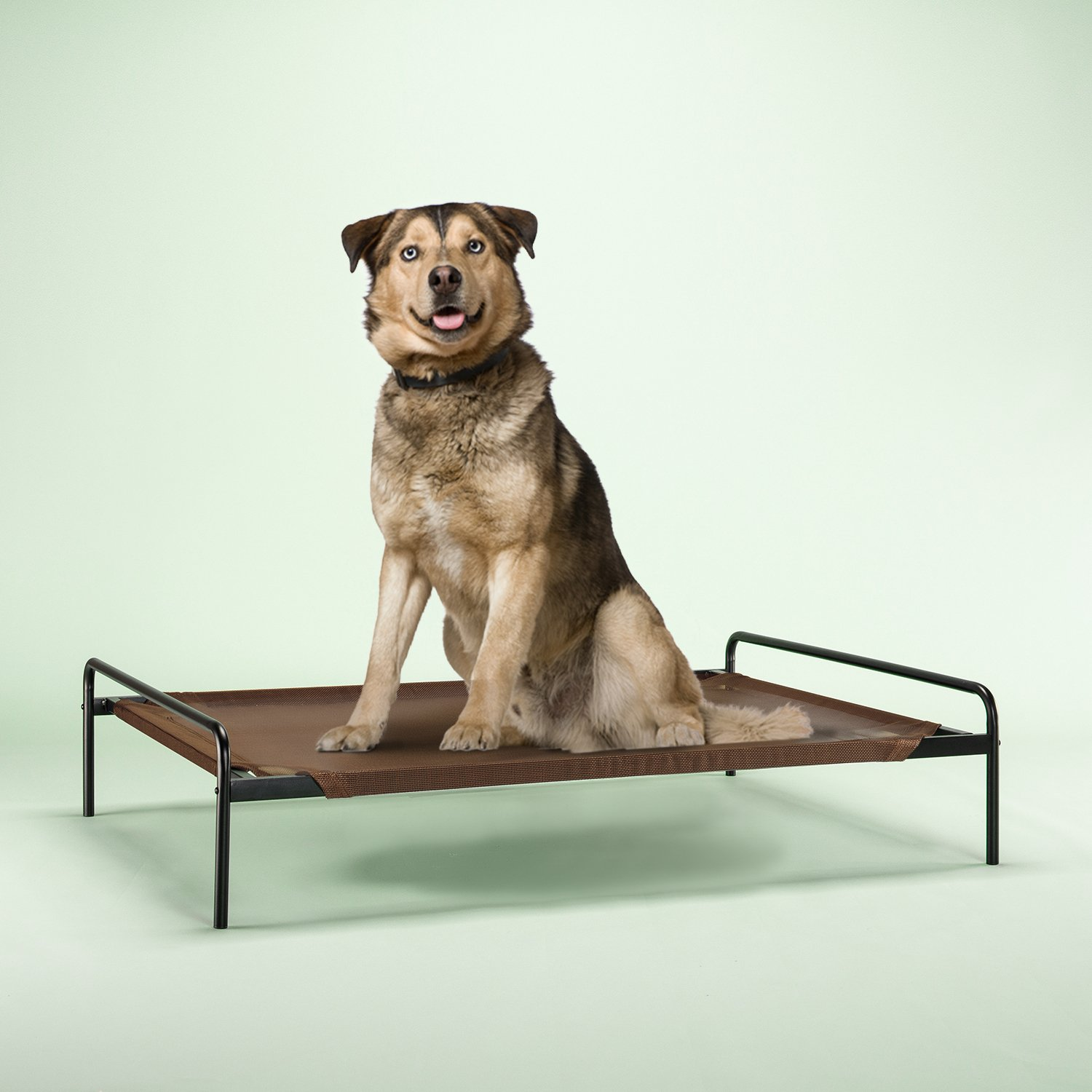 Zinus Elevated Metal Framed Comfort Pet Bed Large in Brown