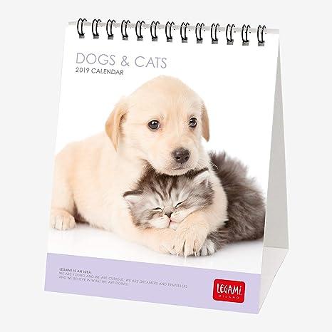 Legami Calendario De Sobremesa 2019 Perros Y Gatos