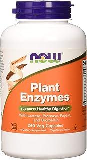 Amazon com: NOW Pancreatin 10X200 mg 250 Capsules: Health & Personal