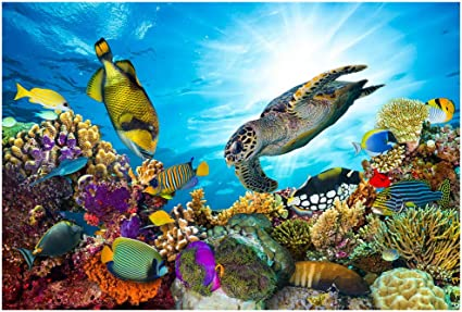 Jigsaw Puzzle 1000 Pcs Underwater Sea World Turtle General Hobby Toy Puzzle Gift