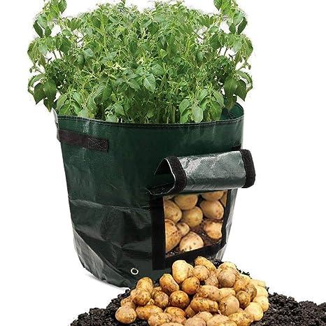 SDZWD Sembradora de Patatas, Bolsas de Cultivo, macetas para ...