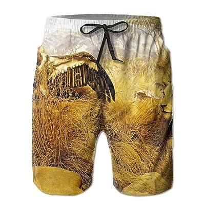 Wild Zoo Leopard Eagle ButterflyHandsome Fashion Summer Cool Shorts Swimming Trunks Beachwear Beach Shorts