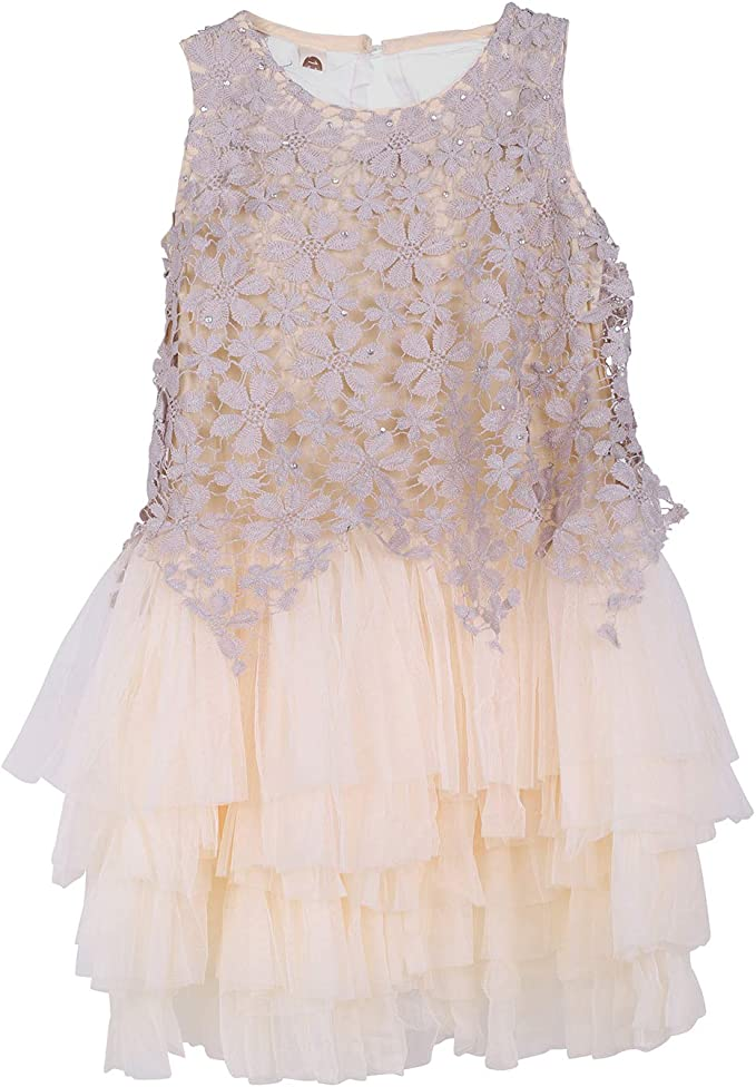 Lontg Baby Madchen Kleidung Spitzen Prinzessin Kleider Hochzeit Kleid Abendkleid Festzug Kinder Kleidung Armellos Mesh Kleid Amazon De Bekleidung